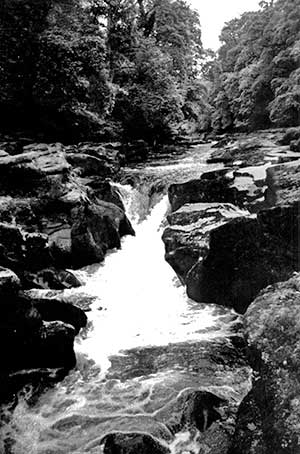 The Strid gorge, West Yorkshire